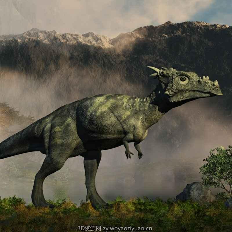 DracorexDR