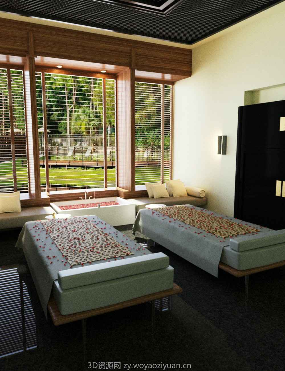 Spa and Massage Room