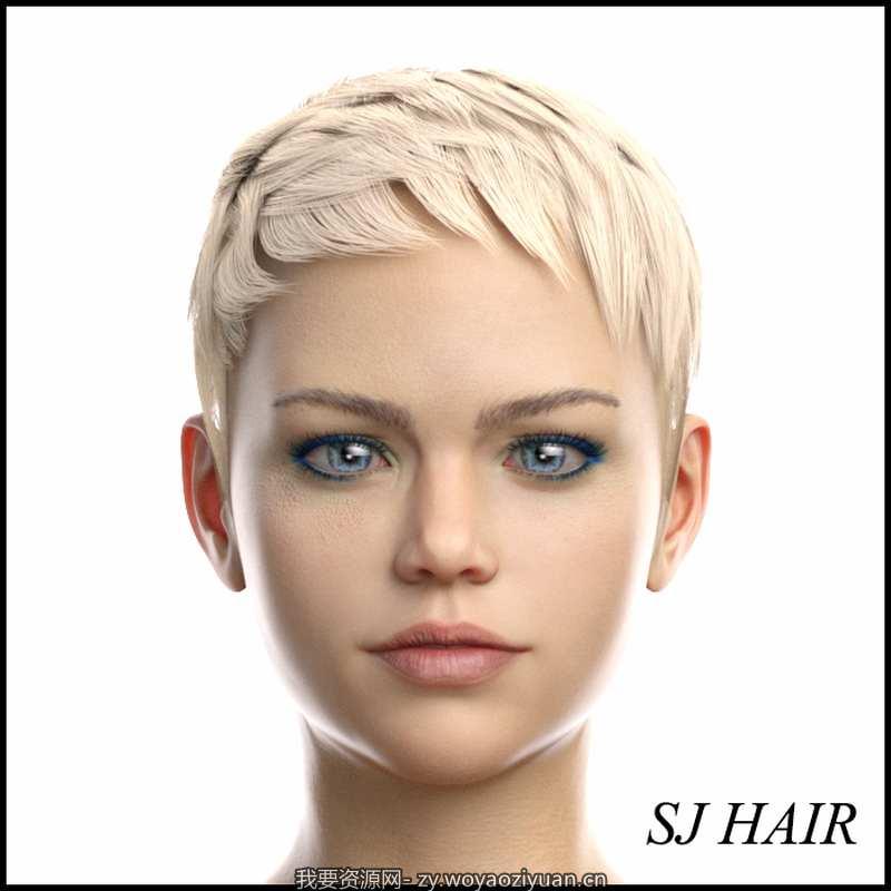 SJ Hair for Genesis 8 Female